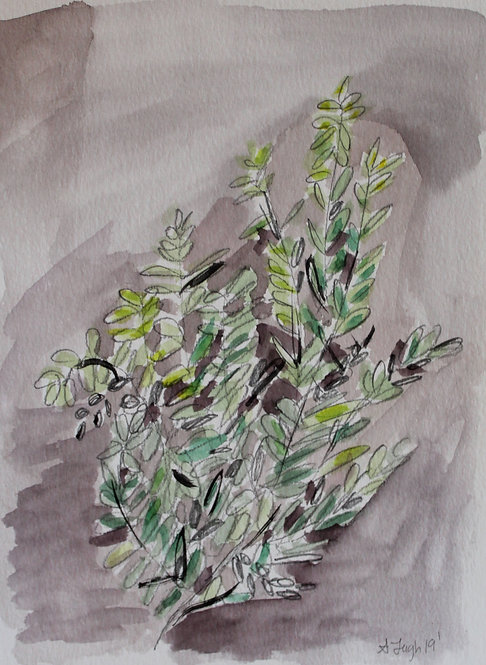 """""""Lavender and Green 2"""""""