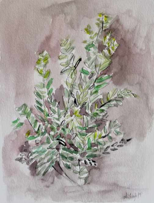 """Lavender and Green 1"""
