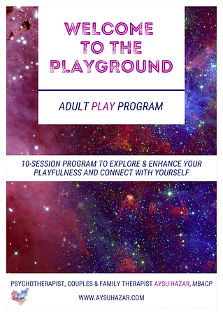 Adult Play Program