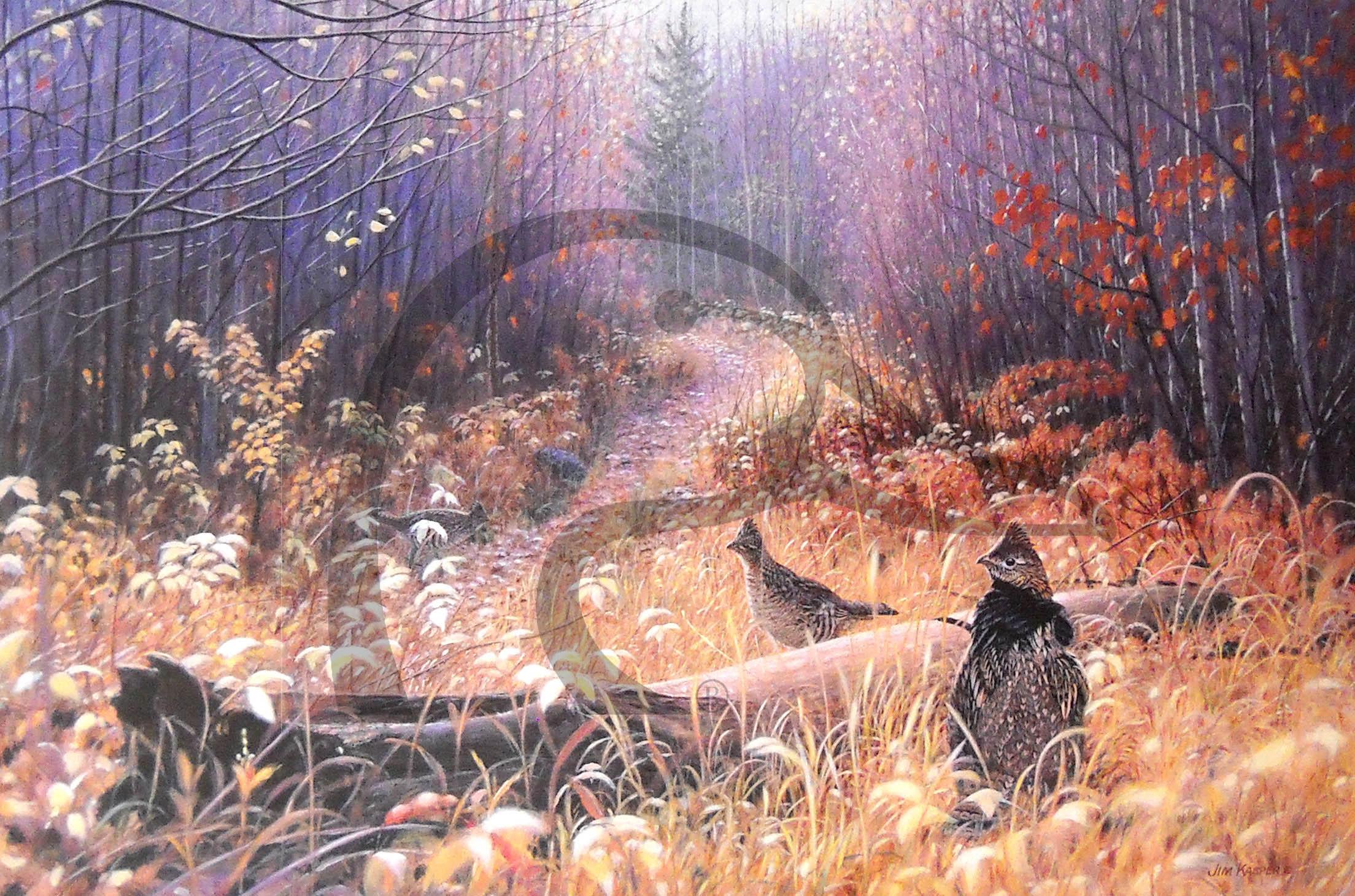 Trail's End Sanctuary