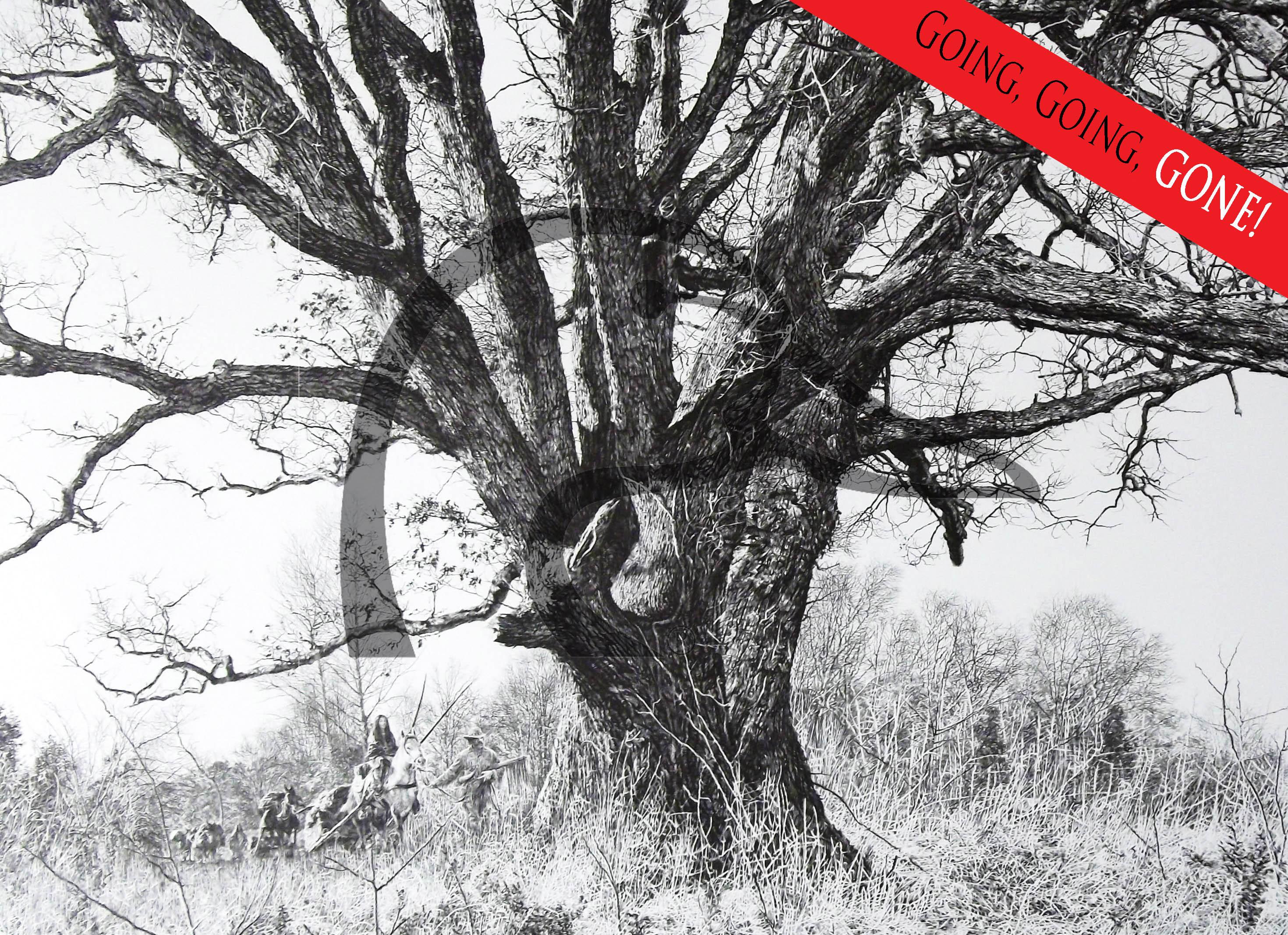 The Landmark Tree