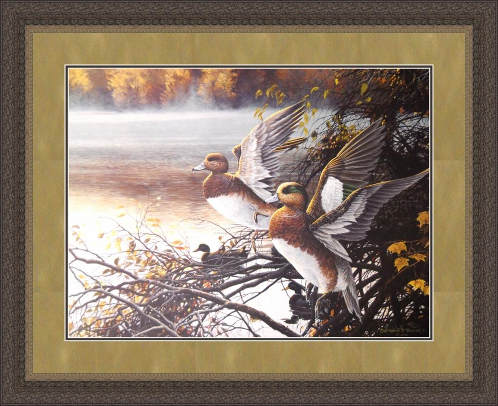 Misty River Widgeon