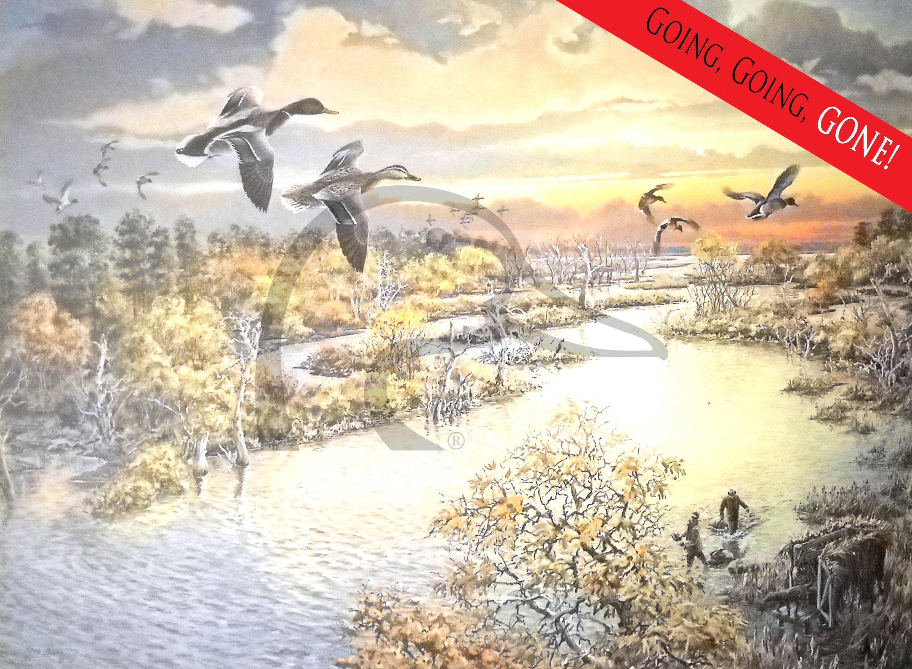 Texas Wetlands Print II