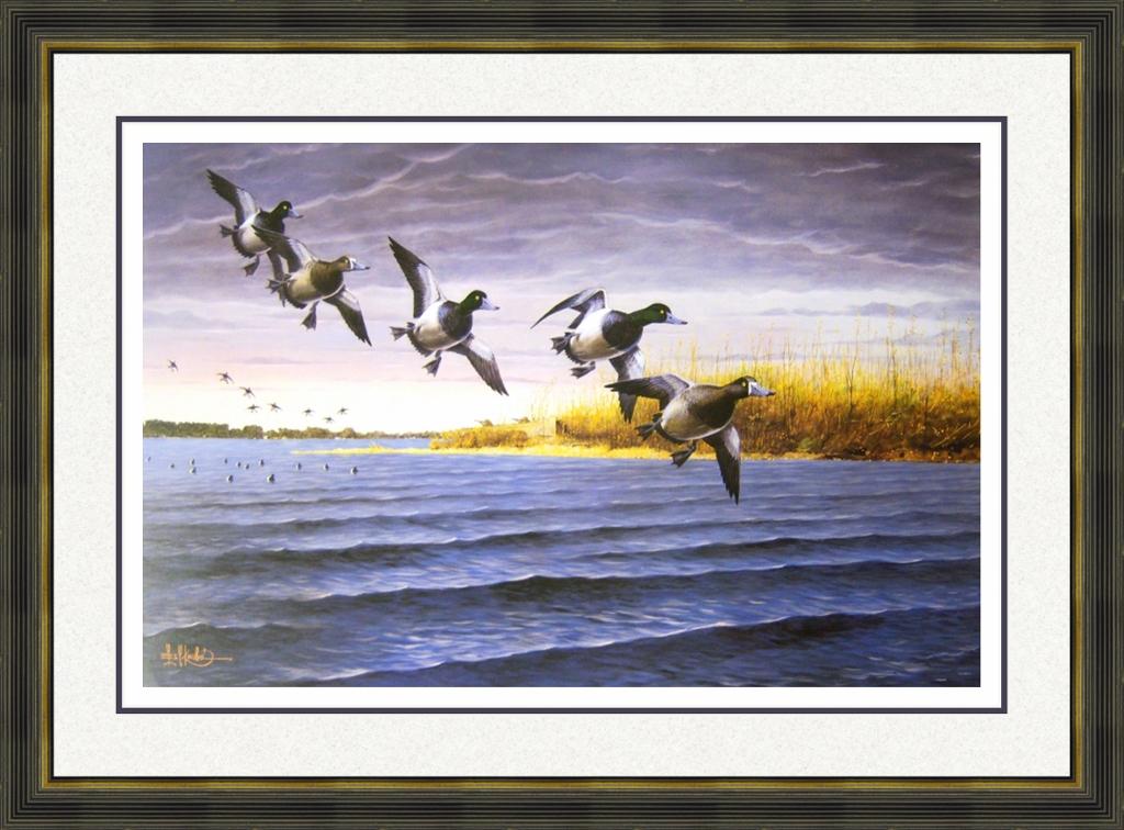 Bluebills Visit Long Point
