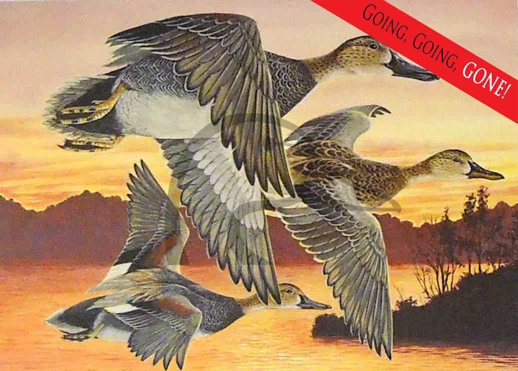 1991 OK Stamp Print