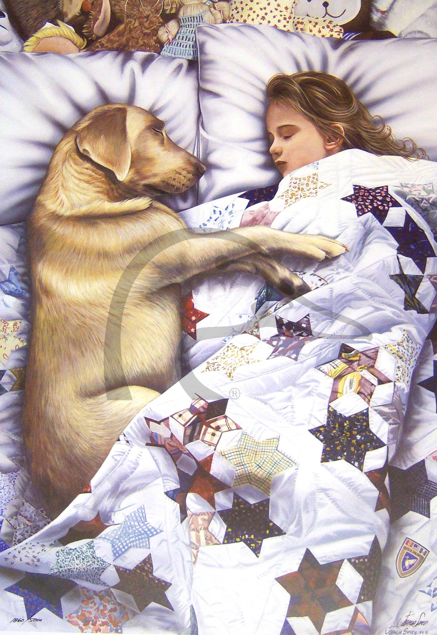 Sweet Dreams Too