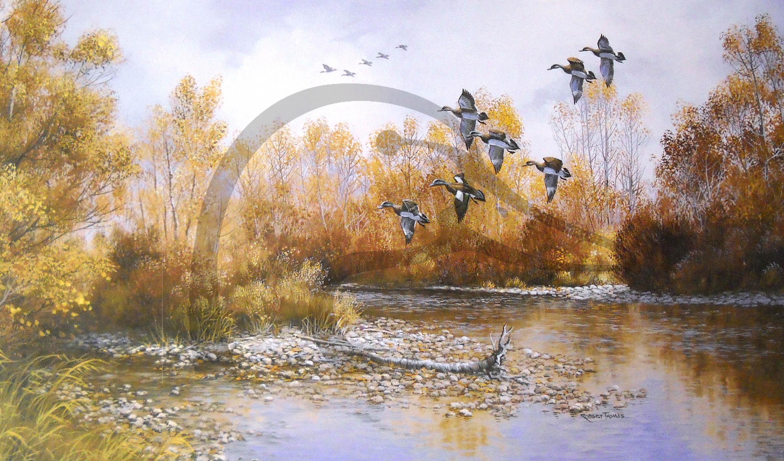 September Widgeons