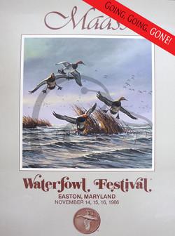 Waterfowl Festival Poster
