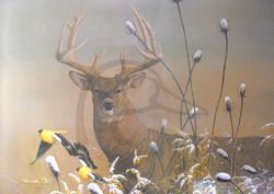 Passin' the Buck