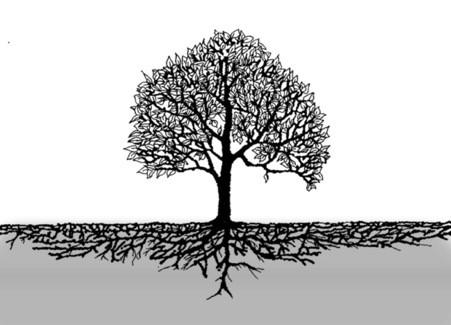 Aile Şirketlerinde Zayıf Yönleri Güçlü Özelliklere Çevirmek