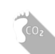An icon of foot representing a carbon footprint.