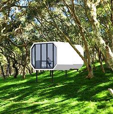 Slide-14 in the forest.jpg