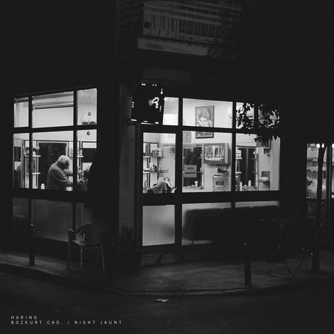 Bozkurt Cad. / Night Jaunt (Single)
