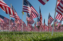Field of Honor - Veteran Tribute