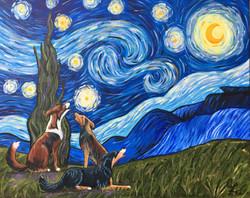 Three Dog Starry Night