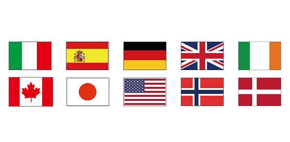 flag-01-01.jpg