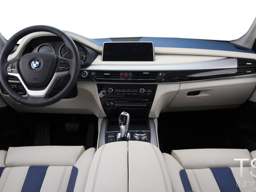 BMW X5 Alpine style от TS tuning