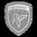 logo-ts-new2.png
