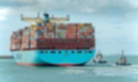 Elly Maersk - Le Havre