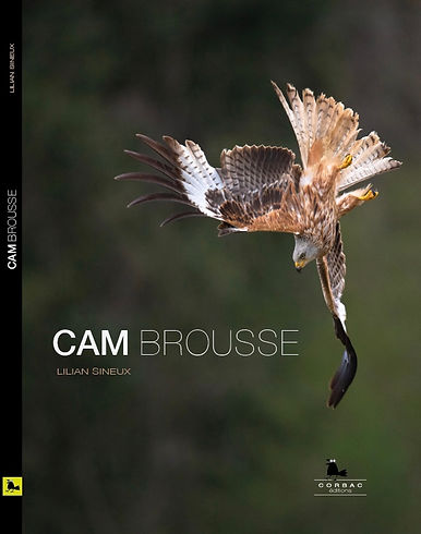 CAMBROUSSE