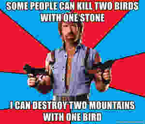Meme: Some people can kill two birds with one stone, I can destroy two mountains with one bird