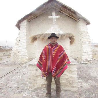 Luis Jimenez Guallatire.jpg