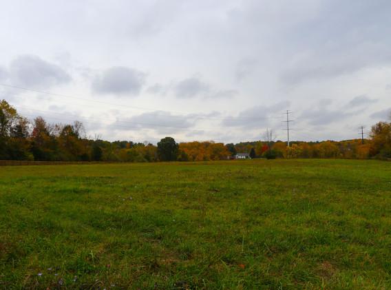 back pasture.jpg