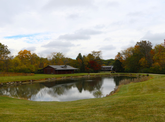 pond leading to house.jpg