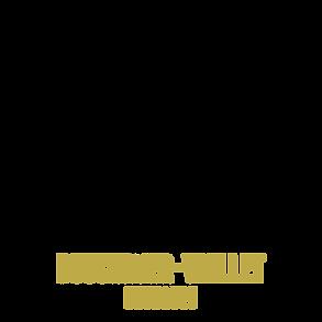 CTR BOUCHAYER VIALLET 1.png