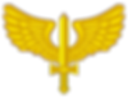 1200px-Coat_of_arms_of_the_Brazilian_Air