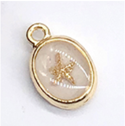 Seashell   17 x 12.5 mm (S)