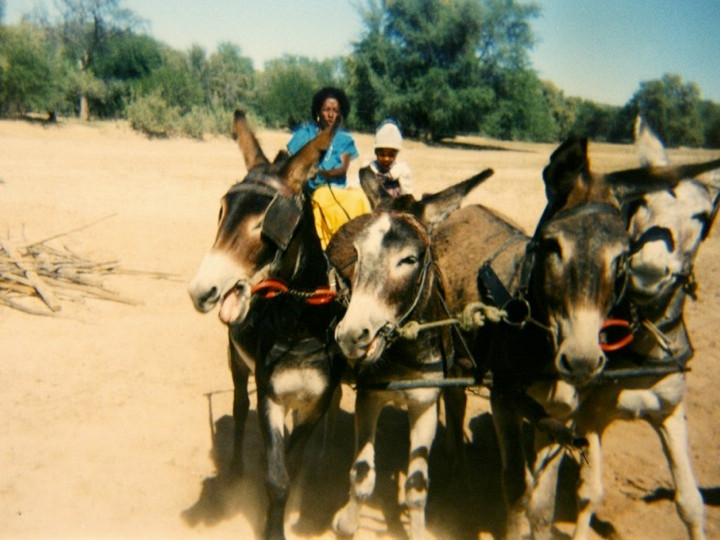 'Willemina and Queenie are going by donkey cart to collect the drought fodder in Okombahe. The donkeys are wanting to run!' (photo: Willem Hoeseb, 1995)
