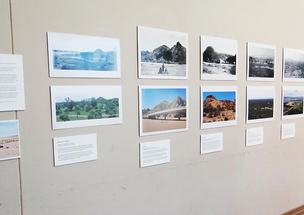 9. Rick's Landscape repeats, Sian Sulliv