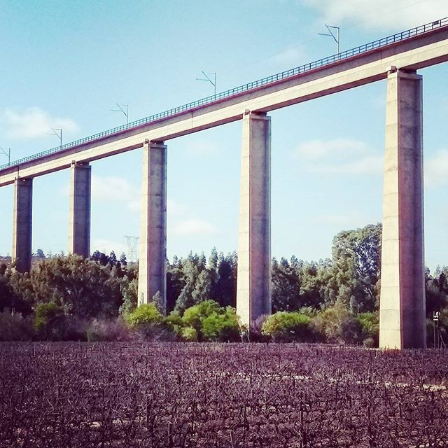 Lutzville bridge, 6 Sept. More than 1km long, the bridge was built to carry iron ore by train across the Olifants river valley to the coast. Photo: Sian Sullivan 060917.