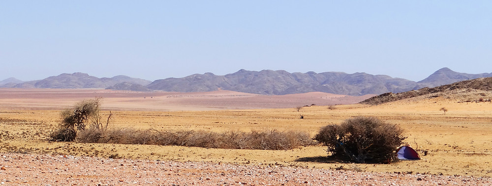Herero kraal and tent at cattle-post in Purros Conservancy, north-west Namibia (photo: Sian Sullivan 141115)