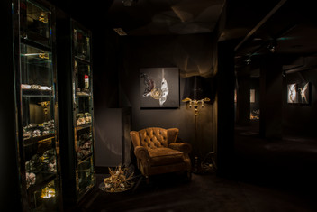 Photographs of Vernissage 'Stardust' by Geovana Clea at Visionnaire Design Gallery Milan