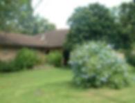 overgrown-house-window-850x650-500x382.j
