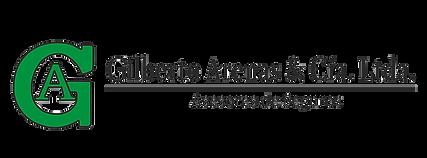 Logo vectores V2 sin fondo.png