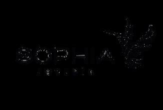 Logo Sophia negro.png