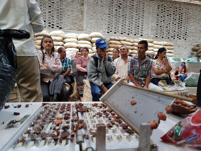 Proyecto Cacao ASOVICA