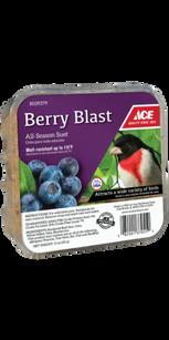 Ace Berry Blast Assorted Species Beef Suet .png
