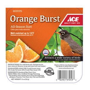 Ace Orange Burst Assorted Species Suet B