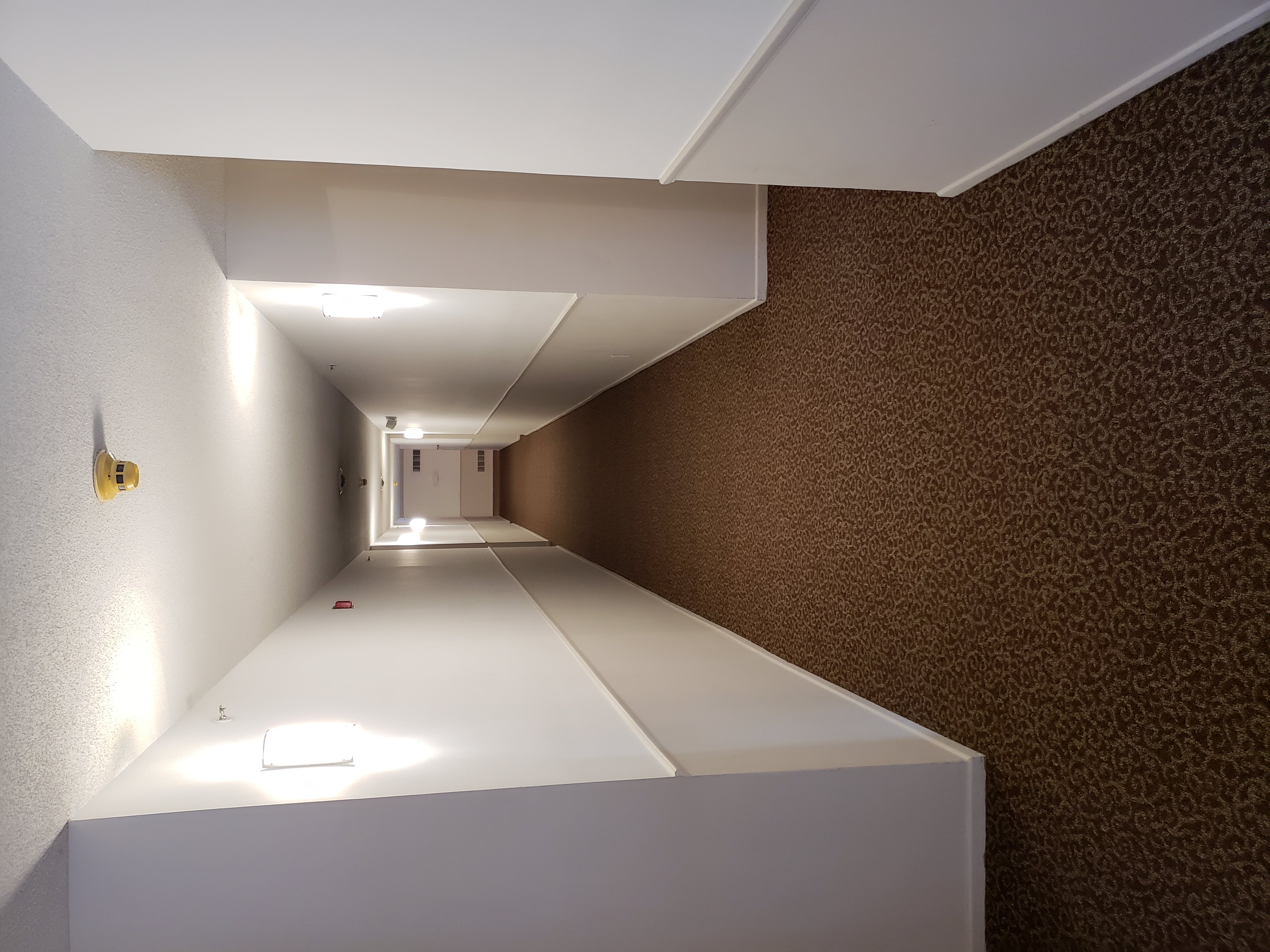Hallway 2018
