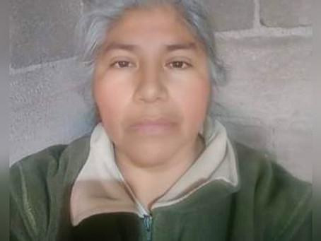 """""""Vuela mi mariposa guerrera, el lobo ya no te alcanzará""""  Teresa de Jesús Méndez"""