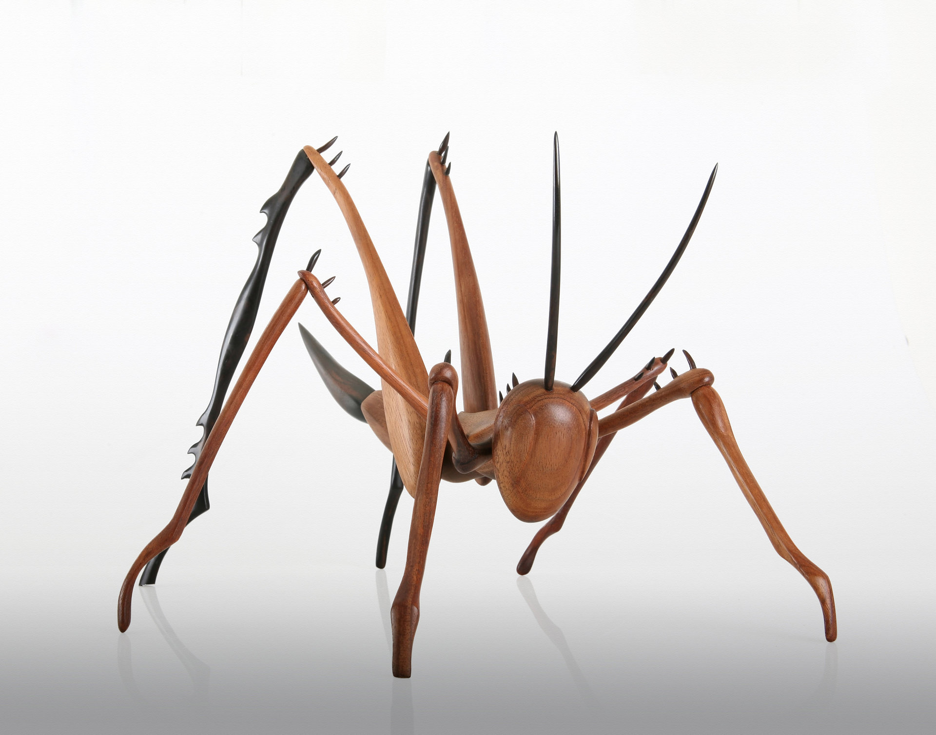 Wooden Insect Sculpture, Cricket