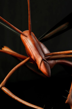 Wooden Insect Sculpture, Wasp