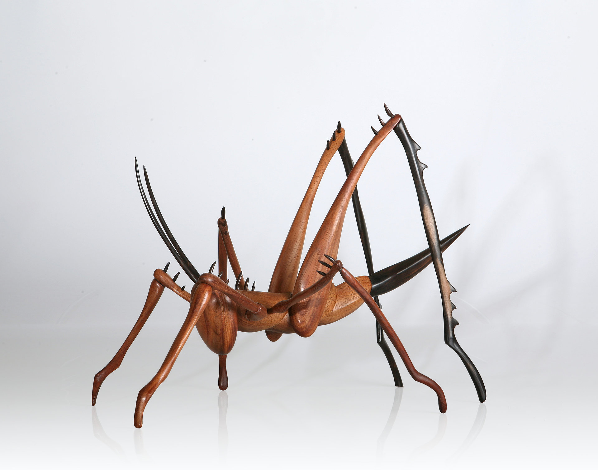 Insect Sculpture , Cricket