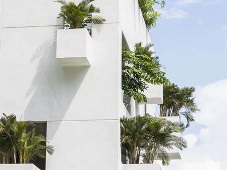 Le architetture sono un po' come le piante