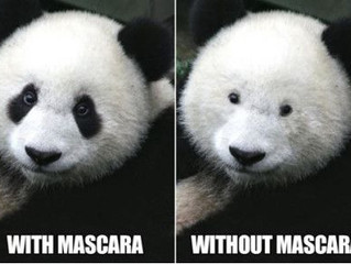Drugstore Mascara: 2 out of 3 ain't bad!