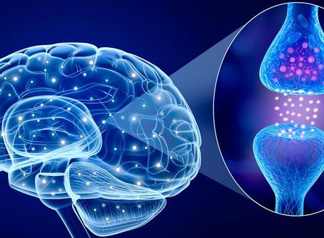 Neurotransmitter-Balance-Assessment
